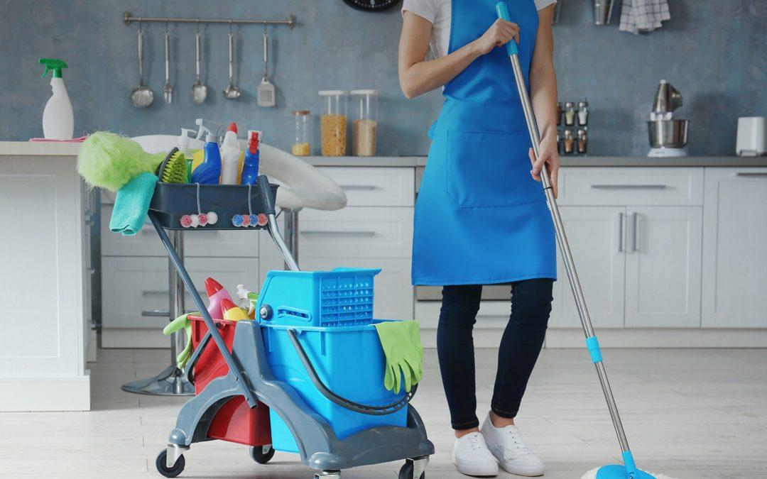 Chariot de ménage ergonomique